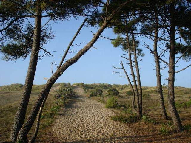 Photo Location ile de noirmoutier 2